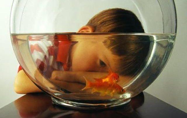 Γιατί τα παιδιά σήμερα έχουν μικρότερη συγκέντρωση και από τα χρυσόψαρα! συγκέντρωση