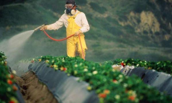 Ποια φρούτα και λαχανικά έχουν τα περισσότερα φυτοφάρμακα και ποια τα λιγότερα! φυτοφάρμακα